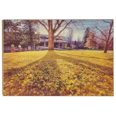 ETSU - Autumn Day - College Wall Art#Wood