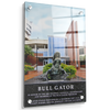 Florida Gators - Bull Gator - College Wall Art #Acrylic