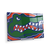 Florida Gators - Gator - College Wall Art #Acrylic Mini