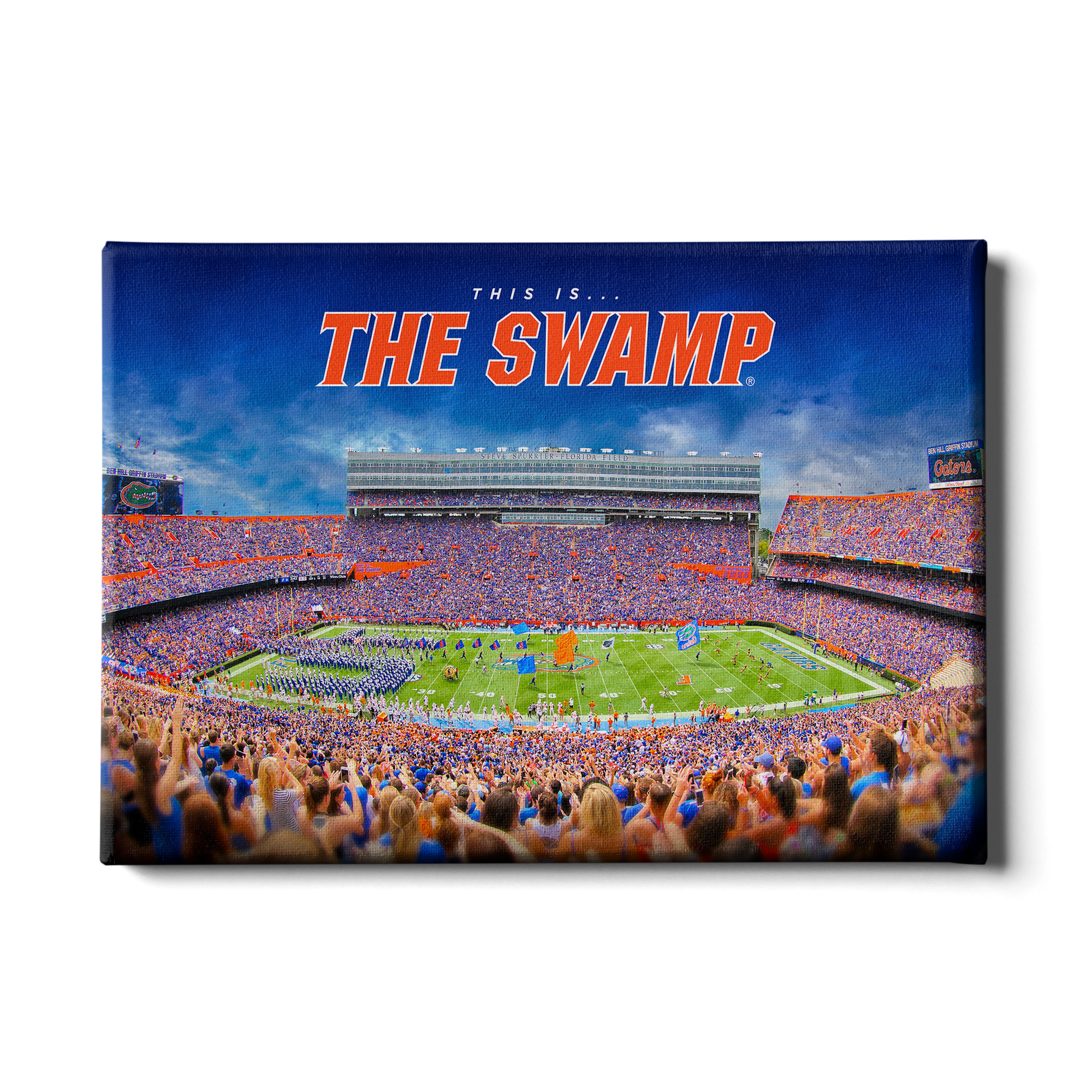 Florida Gators - The Swamp - College Wall Art #Canvas
