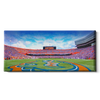 Florida Gators - Gators Panoramic - College Wall Art #Canvas