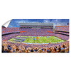 Florida Gators - Ben Hill Griffin Stadium Pano - College Wall Art #Wall Decal