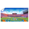Florida Gators - Gators Panoramic - College Wall Art #Wall Decal