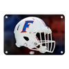 Florida Gators - Florida Helmet - College Wall Art #Metal