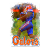 Florida Gators - Gator Run - College Wall Art #PVC