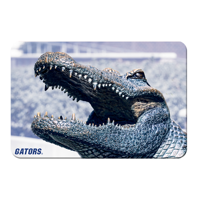 Florida Gators - Bull Gator Up Close - College Wall Art #PVC