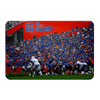 Florida Gators - In the Swamp - College Wall Art #PVC