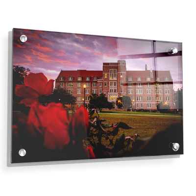 Florida State Seminoles - Red Sunrise Over Landis - College Wall Art #Acrylic