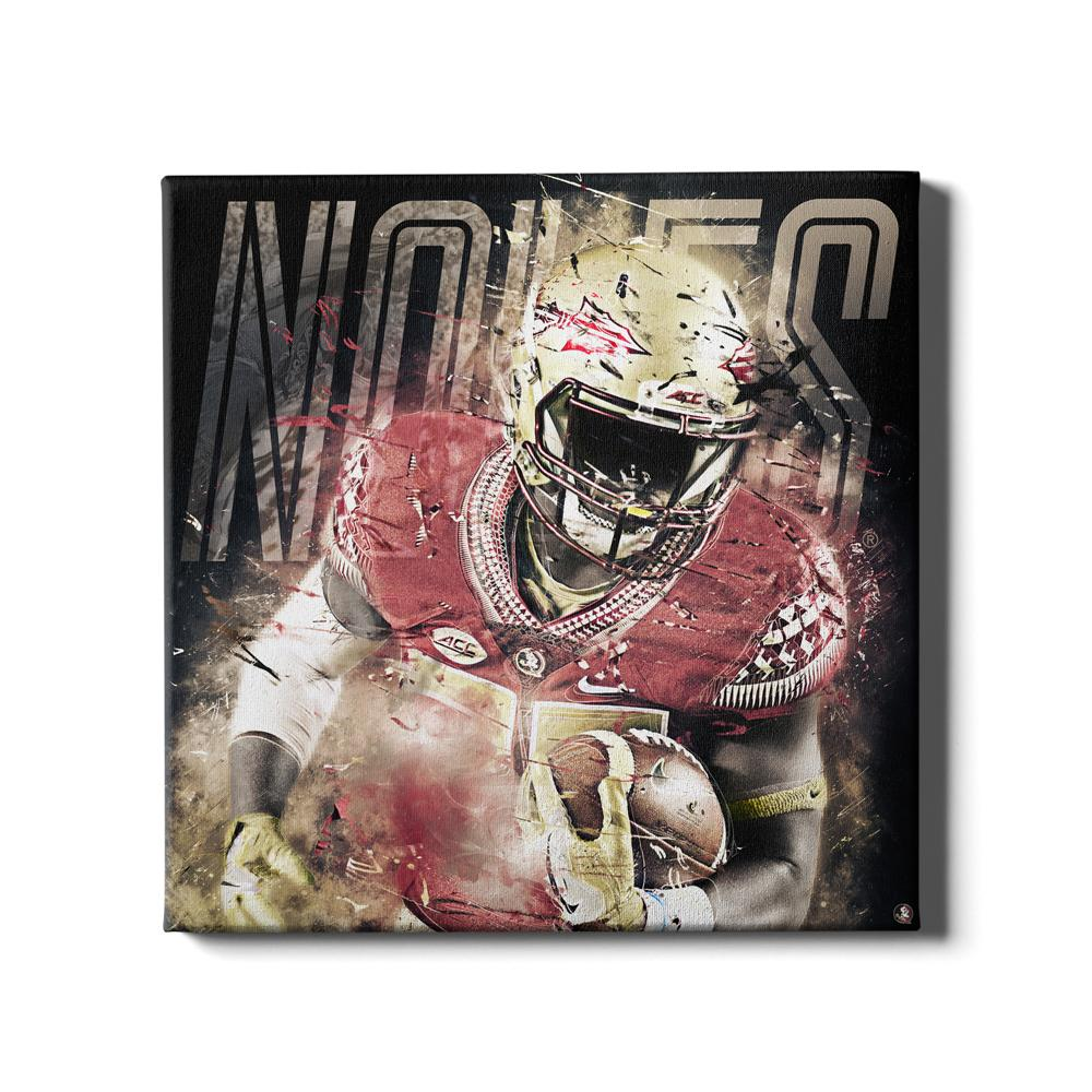 Florida State Seminoles - Noles - College Wall Art #Canvas