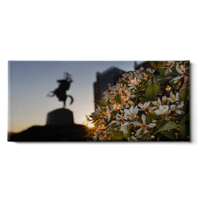 Florida State Seminoles - Unconquered Sunset Pano - College Wall Art #Canvas