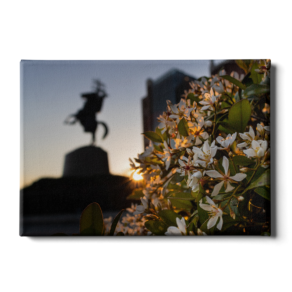 Florida State Seminoles - Unconquered Sunset - College Wall Art #Canvas