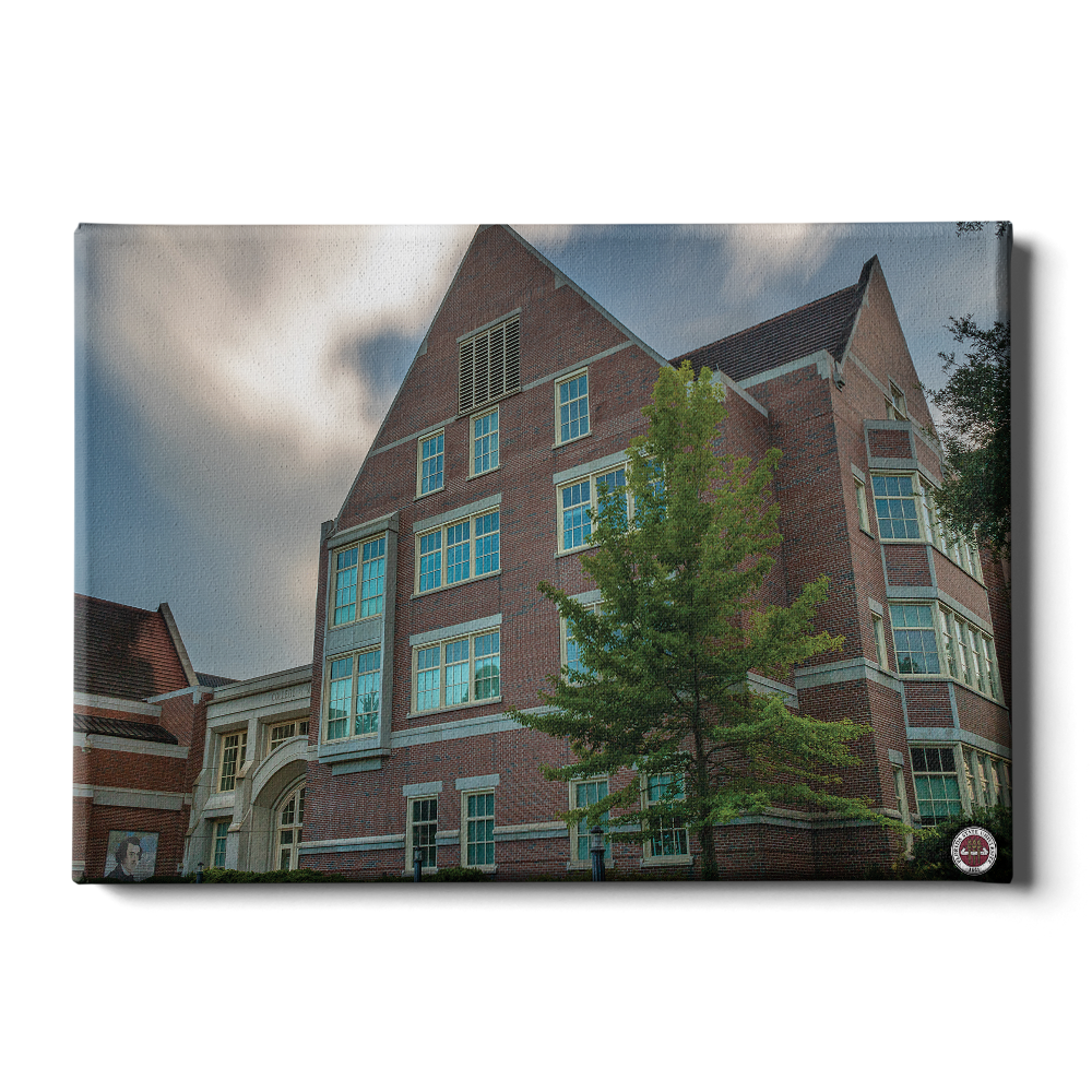 Florida State Seminoles - College of Medicine - College Wall Art #Canvas