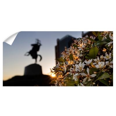 Florida State Seminoles - Unconquered Sunset Pano - College Wall Art #Wall Decal