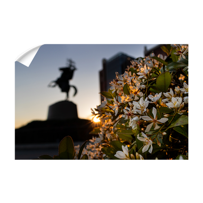 Florida State Seminoles - Unconquered Sunset - College Wall Art #Wall Decal