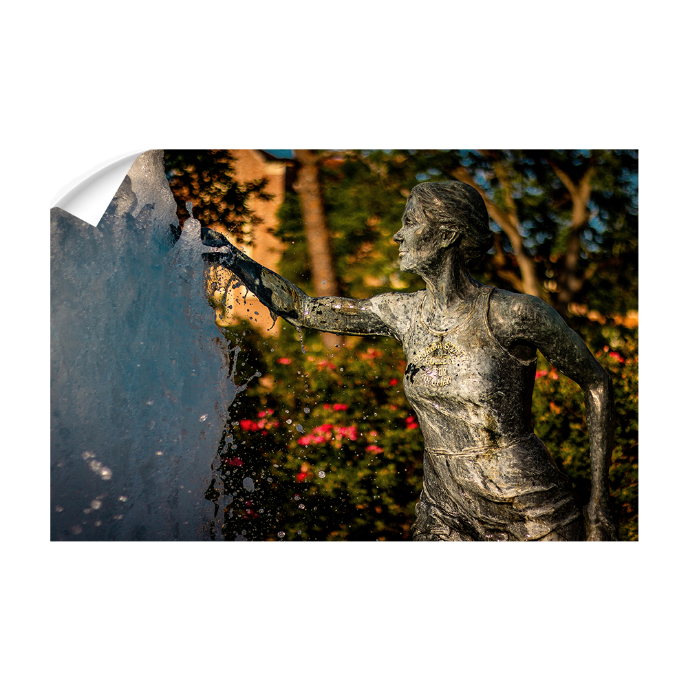 Florida State Seminoles - Legacy Fountain Splash - College Wall Art #Canvas