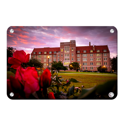 Florida State Seminoles - Red Sunrise Over Landis - College Wall Art #Metal