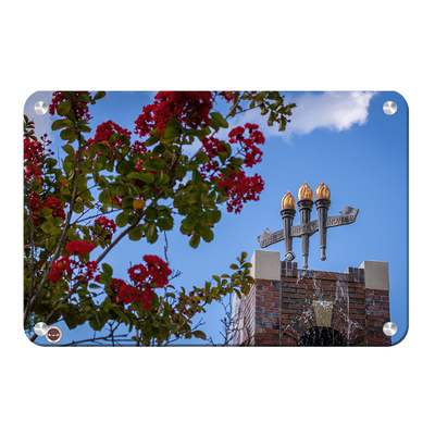 Florida State Seminoles - Red Bloom Torches - College Wall Art #Metal