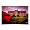 Florida State Seminoles - Red Sunrise Over Landis - College Wall Art #Poster