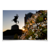 Florida State Seminoles - Unconquered Sunset - College Wall Art #Poster