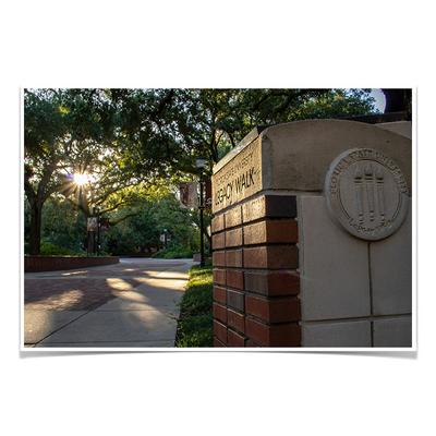Florida State Seminoles - Legacy Walk Sunrise - College Wall Art #Poster