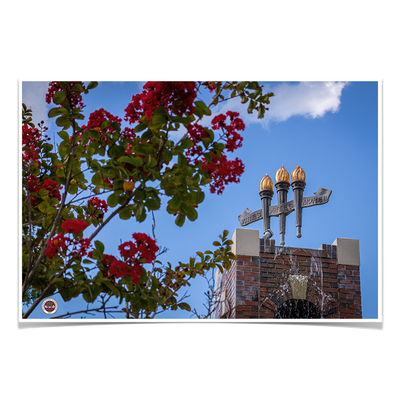 Florida State Seminoles - Red Bloom Torches - College Wall Art #Poster