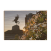 Florida State Seminoles - Unconquered Sunset - College Wall Art #Wood