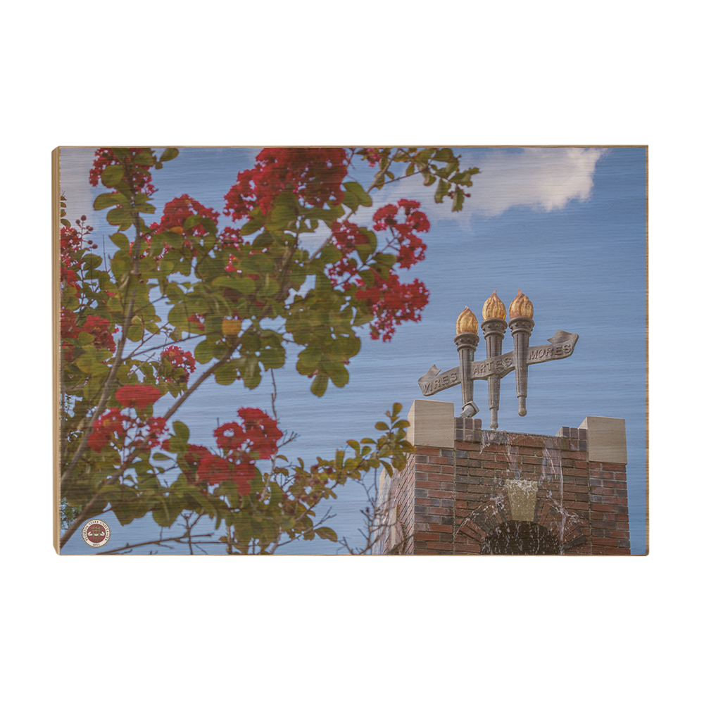 Florida State Seminoles - Red Bloom Torches - College Wall Art #Canvas