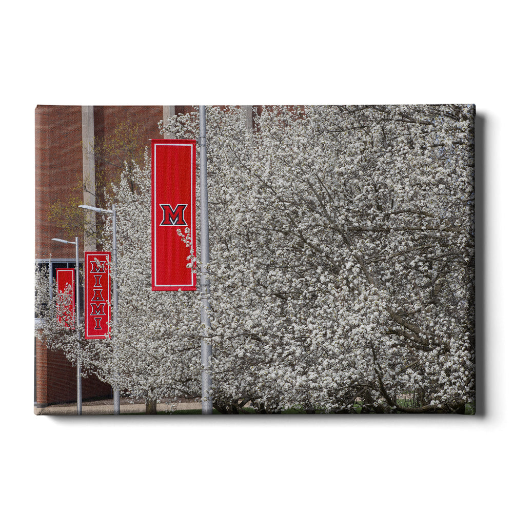 Miami RedHawks<sub>&reg;</sub> - Miami Cherry Blossoms - College Wall Art #Canvas