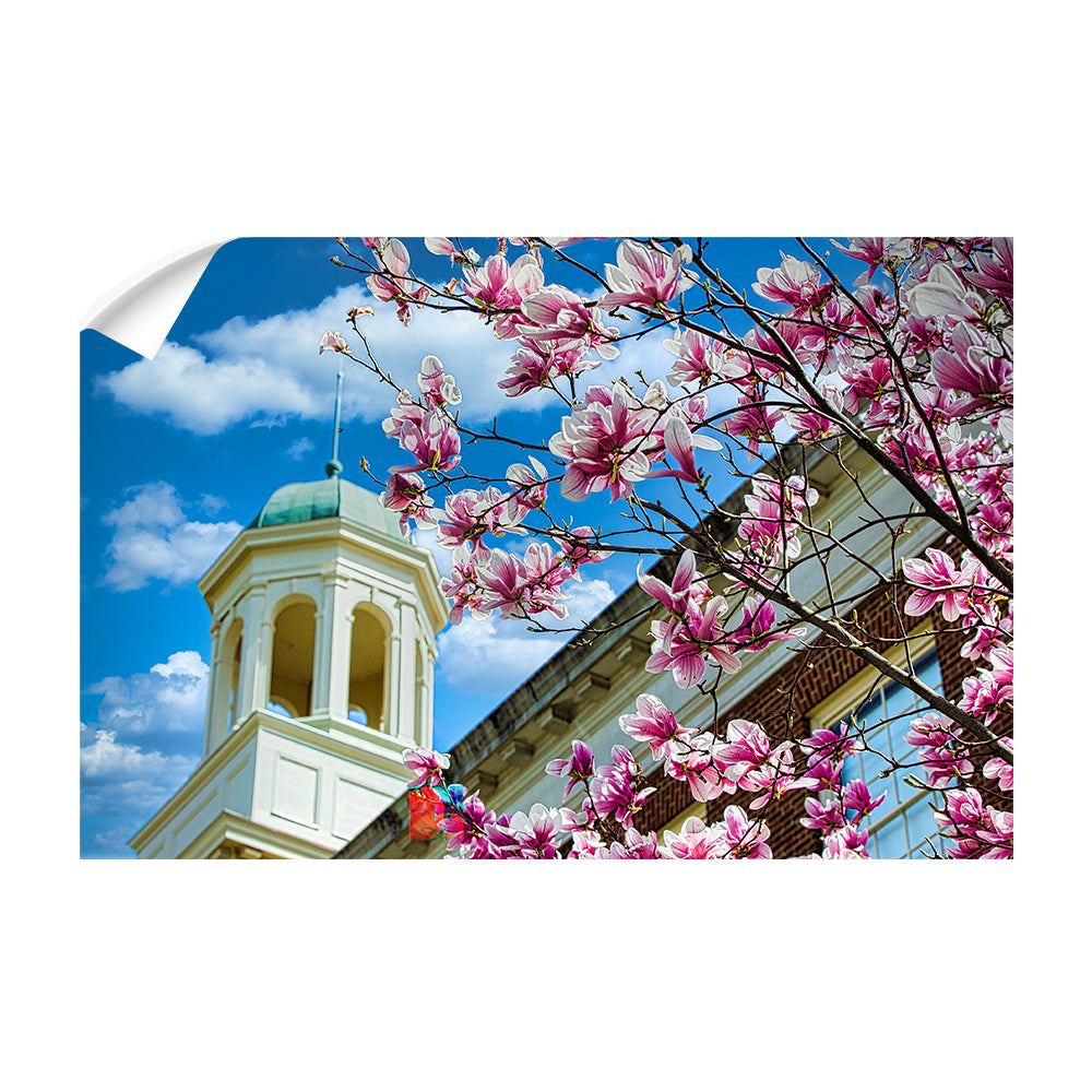 Miami RedHawks<sub>&reg;</sub> - Miami U Spring - College Wall Art #Canvas