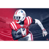 Ole Miss Rebels - Red White Blue Reb - College Wall Art #Dimensional