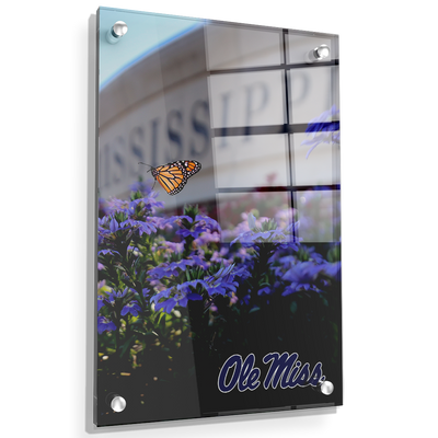 Ole Miss Rebels - Ole Miss Blue - College Wall Art #Acrylic