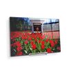 Ole Miss Rebels - Spring Flowers - College Wall Art #Acrylic Mini