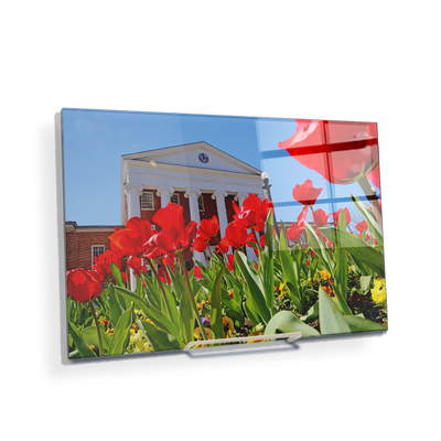 Ole Miss Rebels - Spring Lyceum - College Wall Art #Acrylic Mini