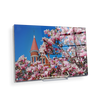 Ole Miss Rebels - Cherry Blossom Ventress - College Wall Art #Acrylic Mini
