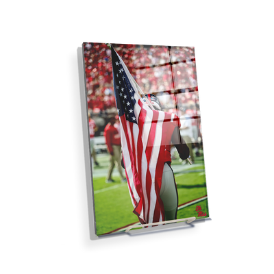 Ole Miss Rebels - Our Flag - College Wall Art #Acrylic Mini
