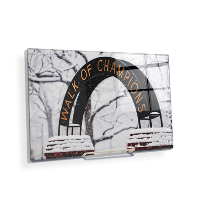 Ole Miss Rebels - Snowy Day Walk of Champions - College Wall Art #Acrylic Mini