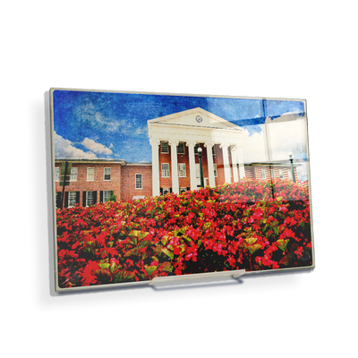 Ole Miss Rebels - Lyceum Paint - College Wall Art #Acrylic Mini