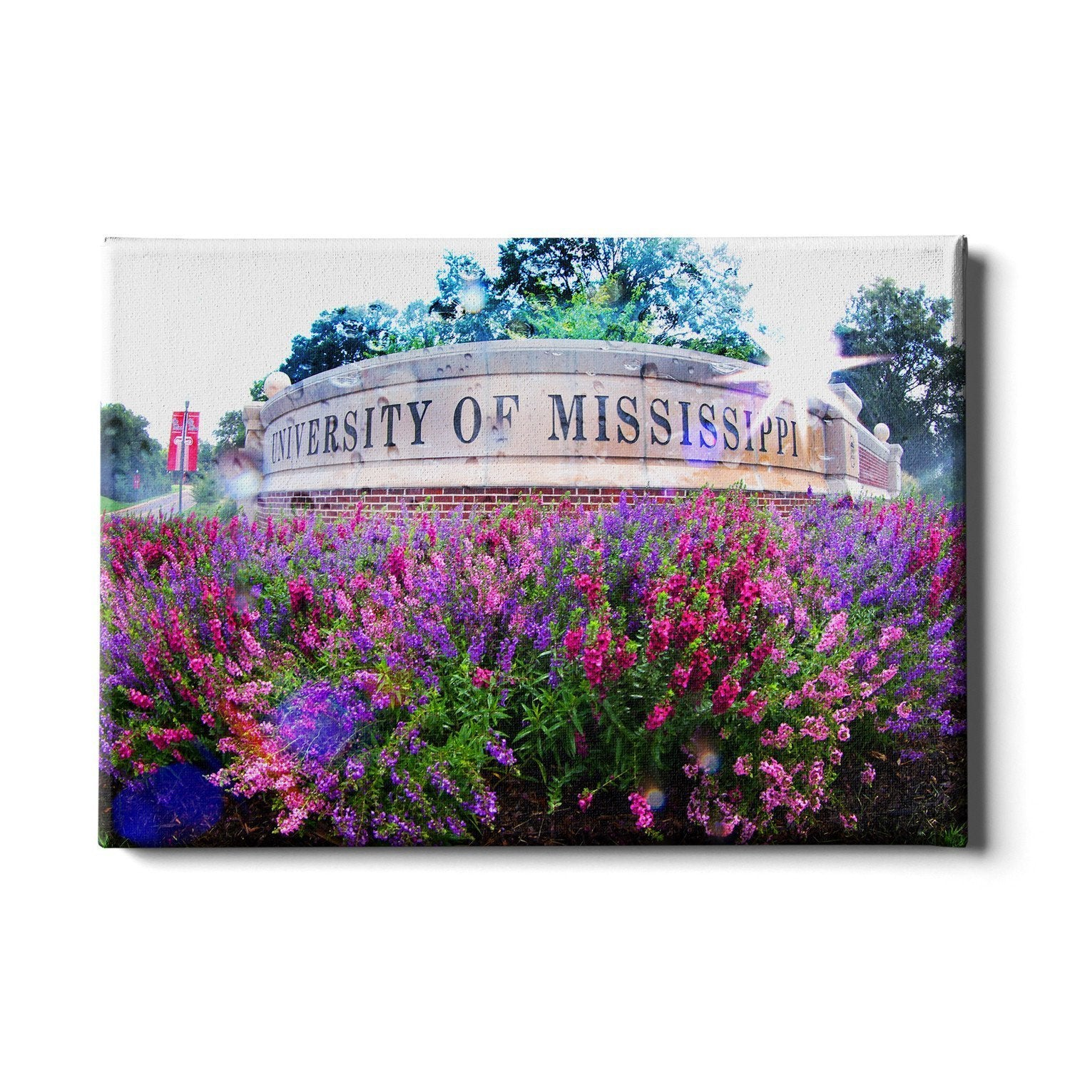 Ole Miss Rebels - University of Mississippi - College Wall Art #Canvas