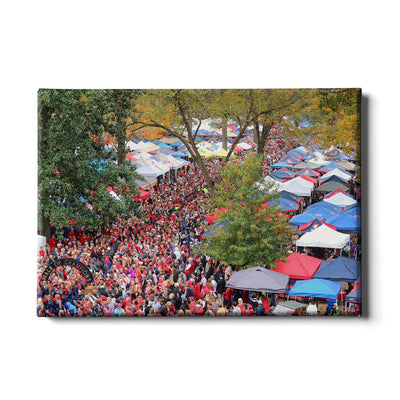 Ole Miss Rebels - Aerial Grove - College Wall Art #Canvas