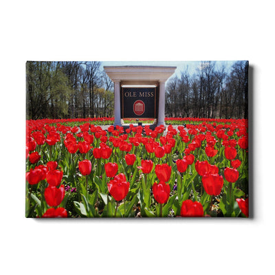 Ole Miss Rebels - Spring Flowers - College Wall Art #Canvas