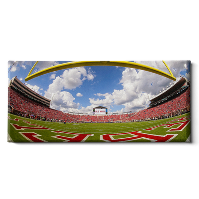 Ole Miss Rebels - Fisheye End zone Panoramic - College Wall Art #Canvas