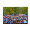 Ole Miss Rebels - Swarm the Grove at Ole Miss - College Wall Art #Canvas