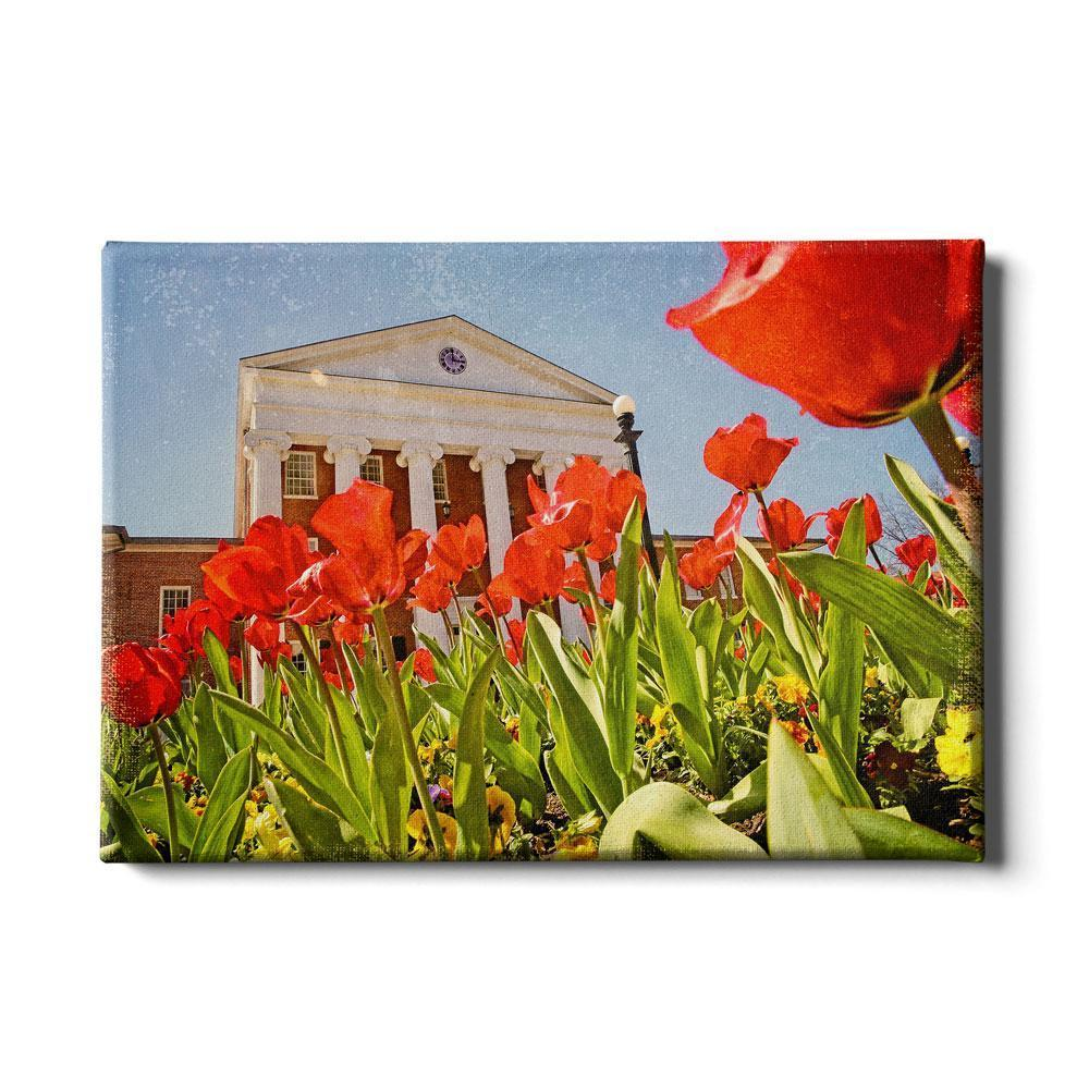 Ole Miss Rebels - Lyceum Grand Tulip Paint - College Wall Art #Canvas