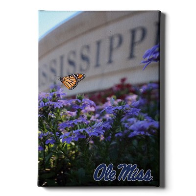 Ole Miss Rebels - Ole Miss Blue - College Wall Art #Canvas