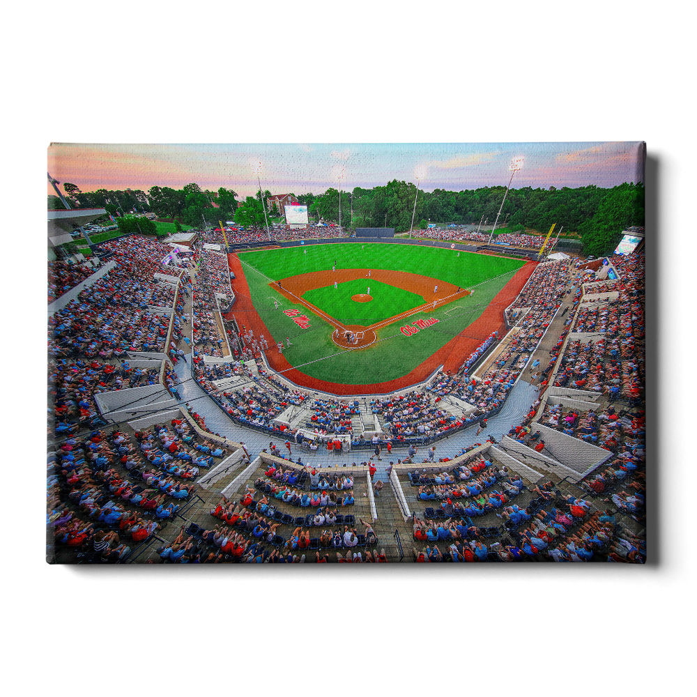 Ole Miss Rebels - NCAA Swayze - College Wall Art #Canvas