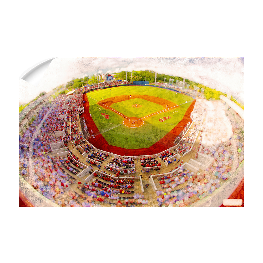 Ole Miss Rebels - Rebels Swayze Field Art - College Wall Art #Canvas