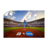 Ole Miss Rebels - NCAA Baseball 2019 - College Wall Art #Wall Decal