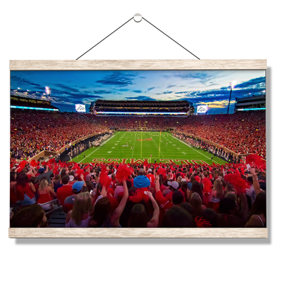 Ole Miss Rebels - Land Shark Sunset - College Wall Art #Hanging Canvas
