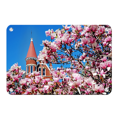 Ole Miss Rebels - Cherry Blossom Ventress - College Wall Art #Metal