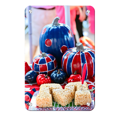 Ole Miss Rebels - Mississippi Pumpkin - College Wall Art #Metal